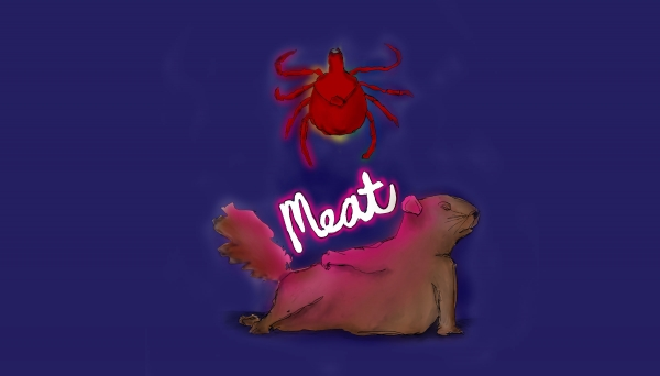 VoxFest 2020: Meat