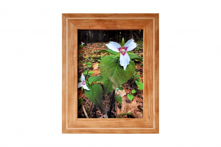 Picture Frame - Woodworking Workshop