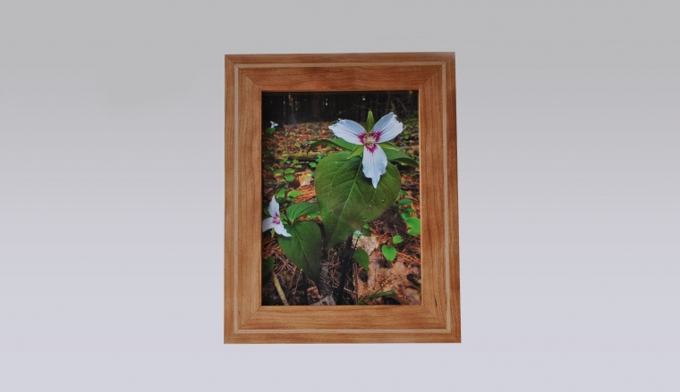 Picture Frame Making