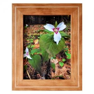 Picture Frame - Woodworking Workshop